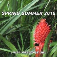 Collezione Primavera-Estate 2016 su cartella